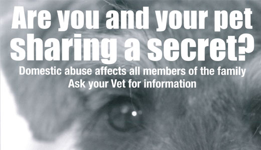 Domestic Abuse Veterinary Intervention poster