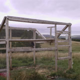 Cage trap on shooting estate