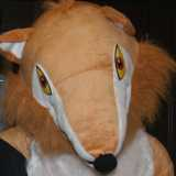 fox at LibDem conference