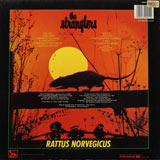 Cover of Rattus Norvegicus