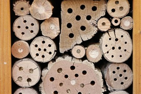 Insect hotel for hibernating bumblebees