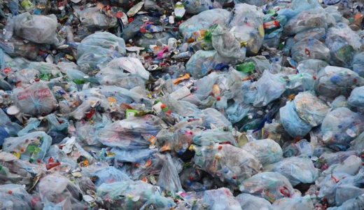 The fight against plastic waste