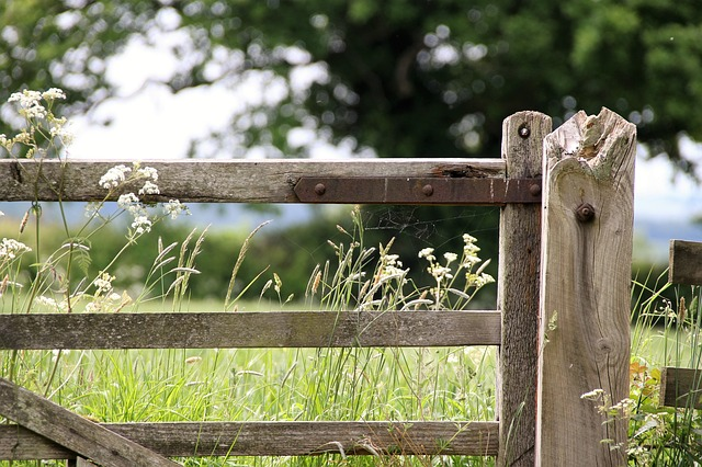 Always shut gates behind you - how to behave correctly in the countryside