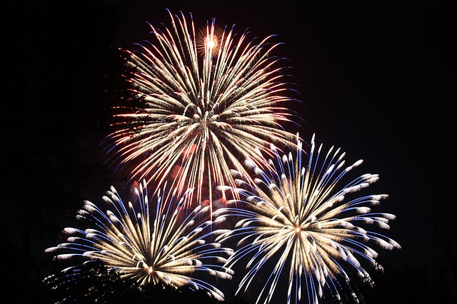 Fireworks - keep pets safe from fireworks this 4th of July.
