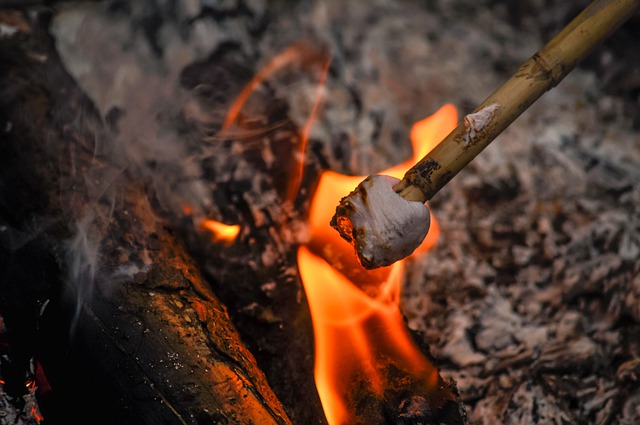 Toasting marshmallows on a campfire.